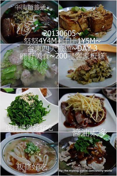 61-1020605台東鹿野森活民宿_熱氣球_初鹿牧場60