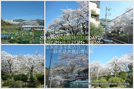 07-1030402京都一日遊5.jpg