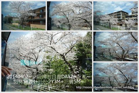 24-1030402京都一日遊22.jpg