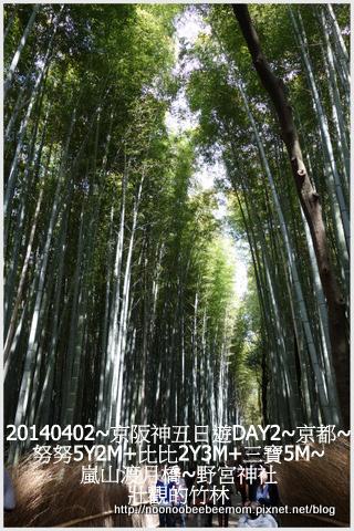 29-1030402京都一日遊27.jpg