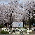 11-1030403神戶明石大橋&大阪城10.jpg