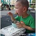 2-1030526豐樂公園野餐2.jpg