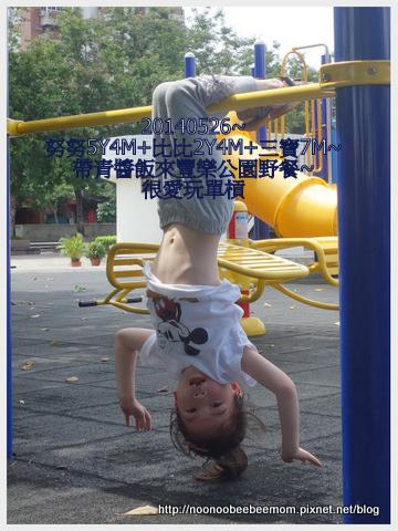 3-1030526豐樂公園野餐9.jpg