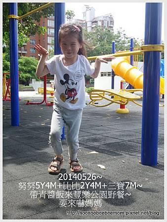 4-1030526豐樂公園野餐10.jpg