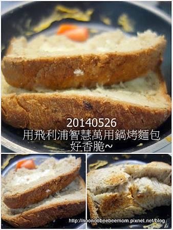 1-1030526豐樂公園野餐5.jpg