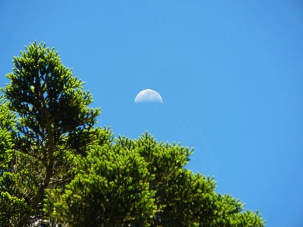 好喜歡看月亮^___^