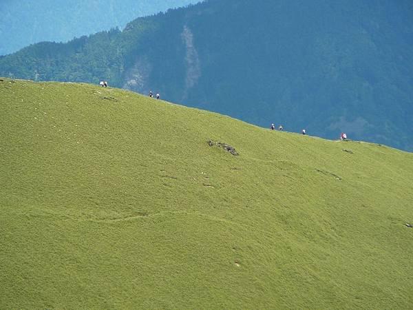 大草原上的螻蟻...