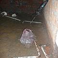 老舊公寓一定要換管線!!