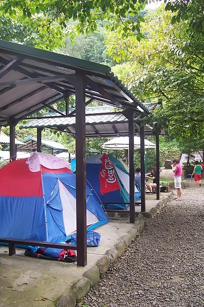 金成露營度假中心場地