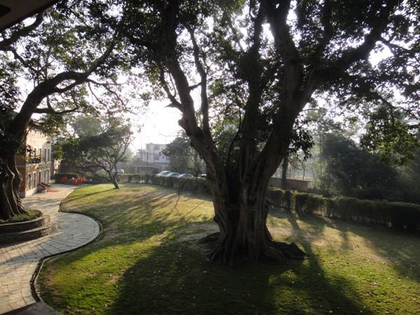 尼泊爾(3)-清晨