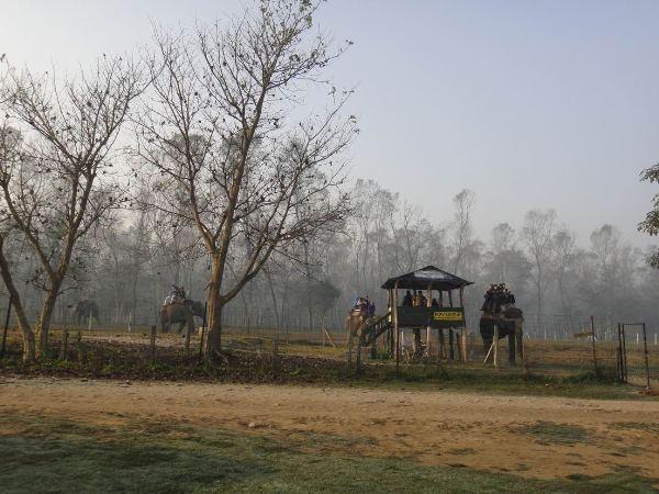 尼泊爾(6)