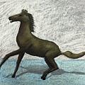 黃銅馬-大哥
