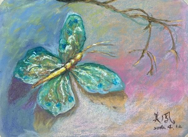 蝴蝶-美鳳
