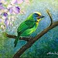 壓克力(1)_5_五色鳥-2