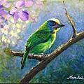 壓克力(1)_5_五色鳥-4