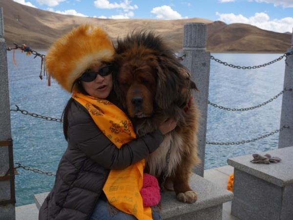 西藏(9)_9_斜倚