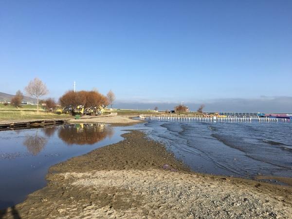 西藏(15)_青海湖畔