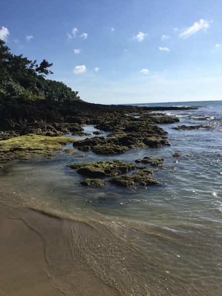 2017墾丁(3)_10_礁岩