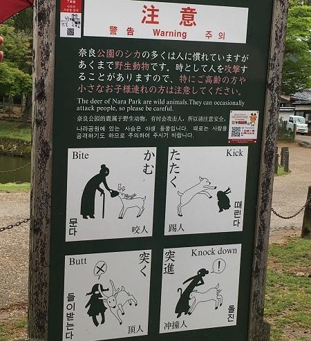 日本(1)_11