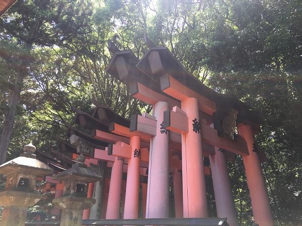 日本(4)