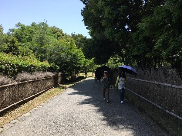 日本(6)-32