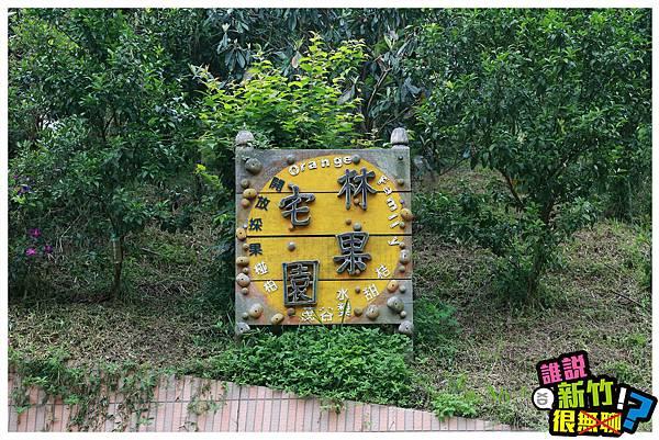 箭竹窩-林家果園