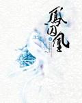 鳳囚凰穿越小說推薦