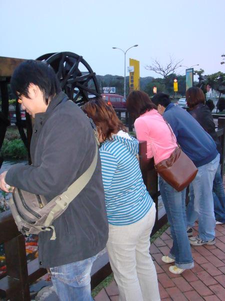 三芝吊橋‧一堆人在餵魚
