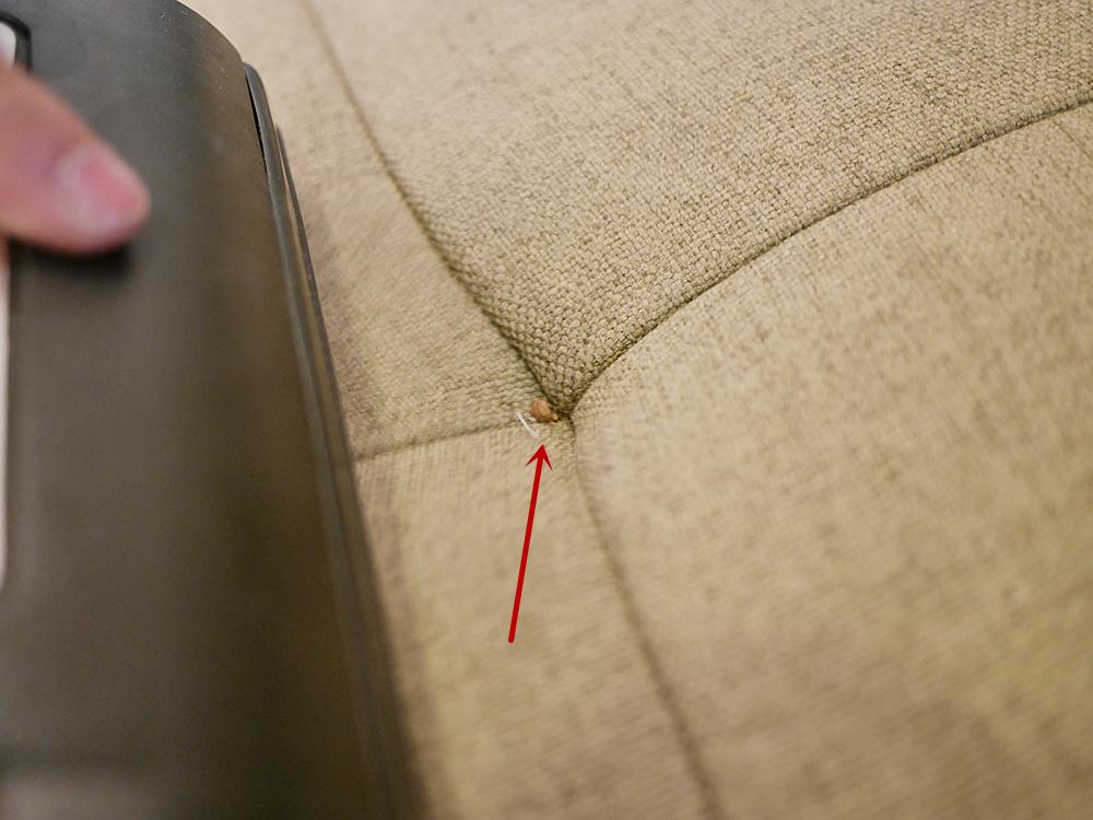 布沙發清潔