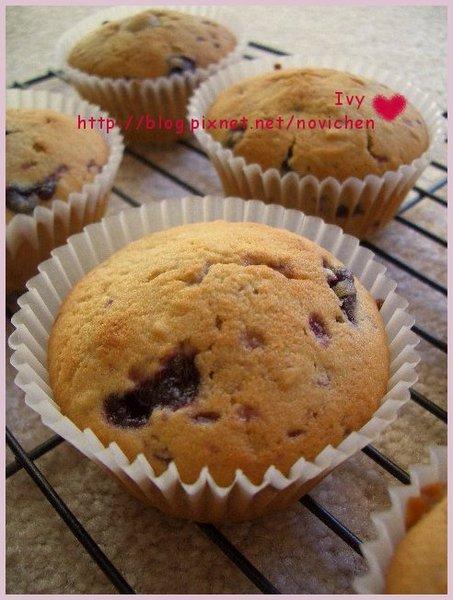 藍莓 Muffin 1