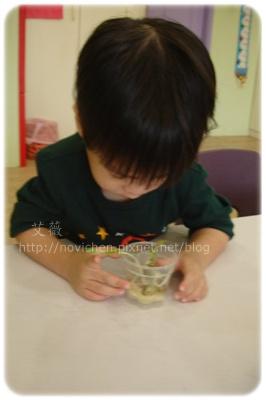 20111020_種綠豆 _2.jpg