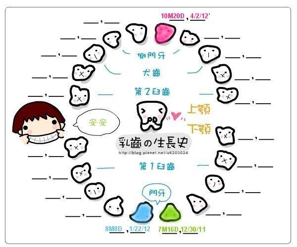 安安乳牙生長圖-[10M20D] 20120402 第三顆牙