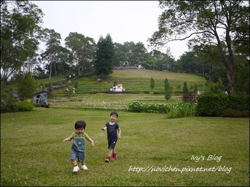 20121027_薰衣草森林_15