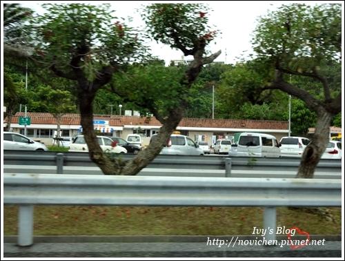 沖繩自動車道_5