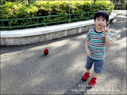 六福村_22.JPG
