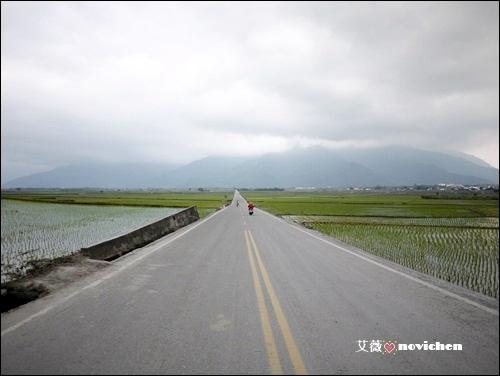 伯朗大道_2.JPG
