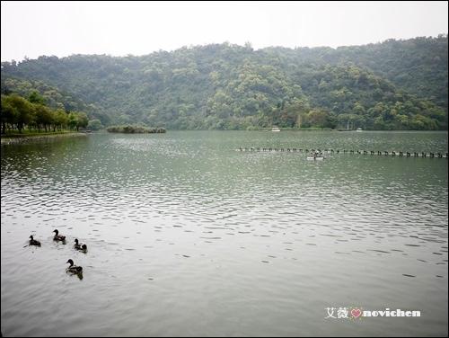 梅花湖_4.JPG