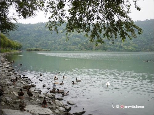 梅花湖_5.JPG
