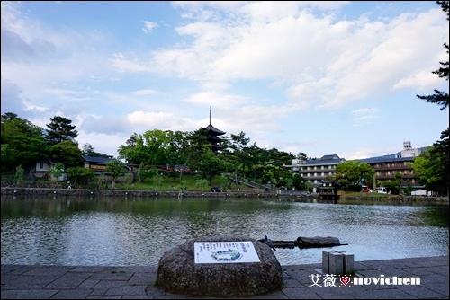 Day5_奈良町_9.JPG