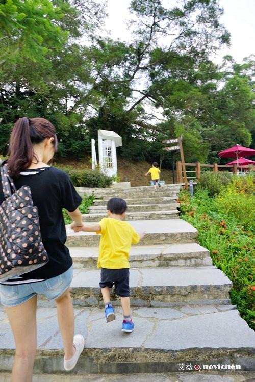 2014-08-30 心鮮森林_20.JPG