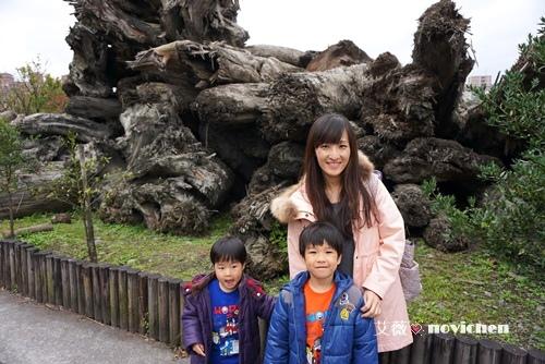20150110_羅東林業_4.JPG