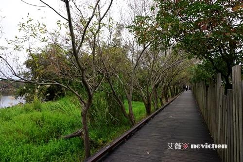 20150110_羅東林業_20.JPG