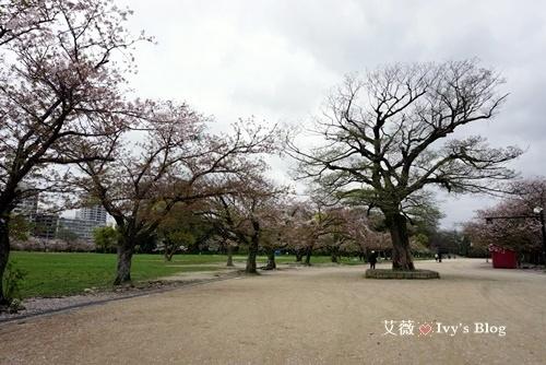 舞鶴公園_2.JPG