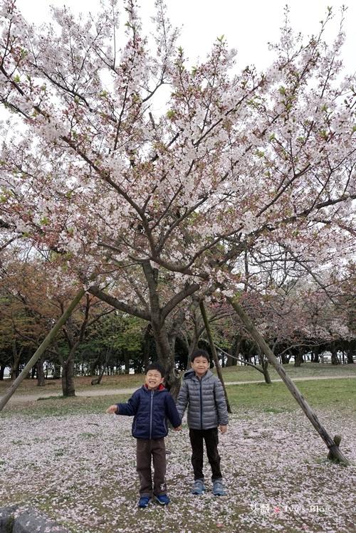 舞鶴公園_3.JPG
