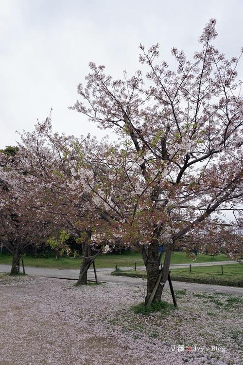 舞鶴公園_5.JPG