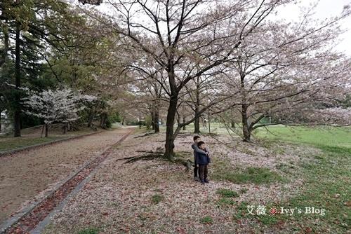 舞鶴公園_7.JPG
