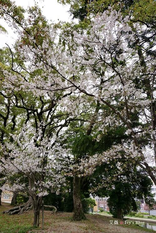 舞鶴公園_6.JPG