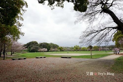 舞鶴公園_10.JPG