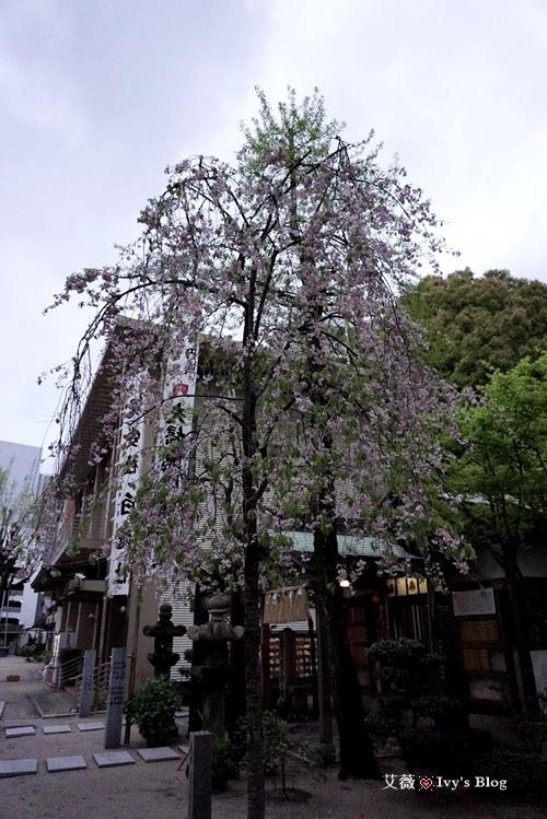 櫛田神社_6.JPG