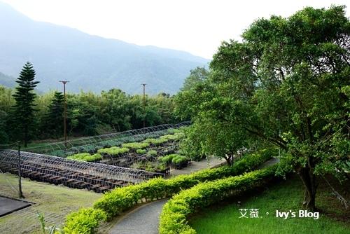 陽明山天籟 _53.JPG